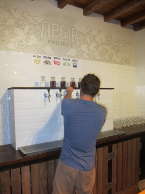 aegir project brewery